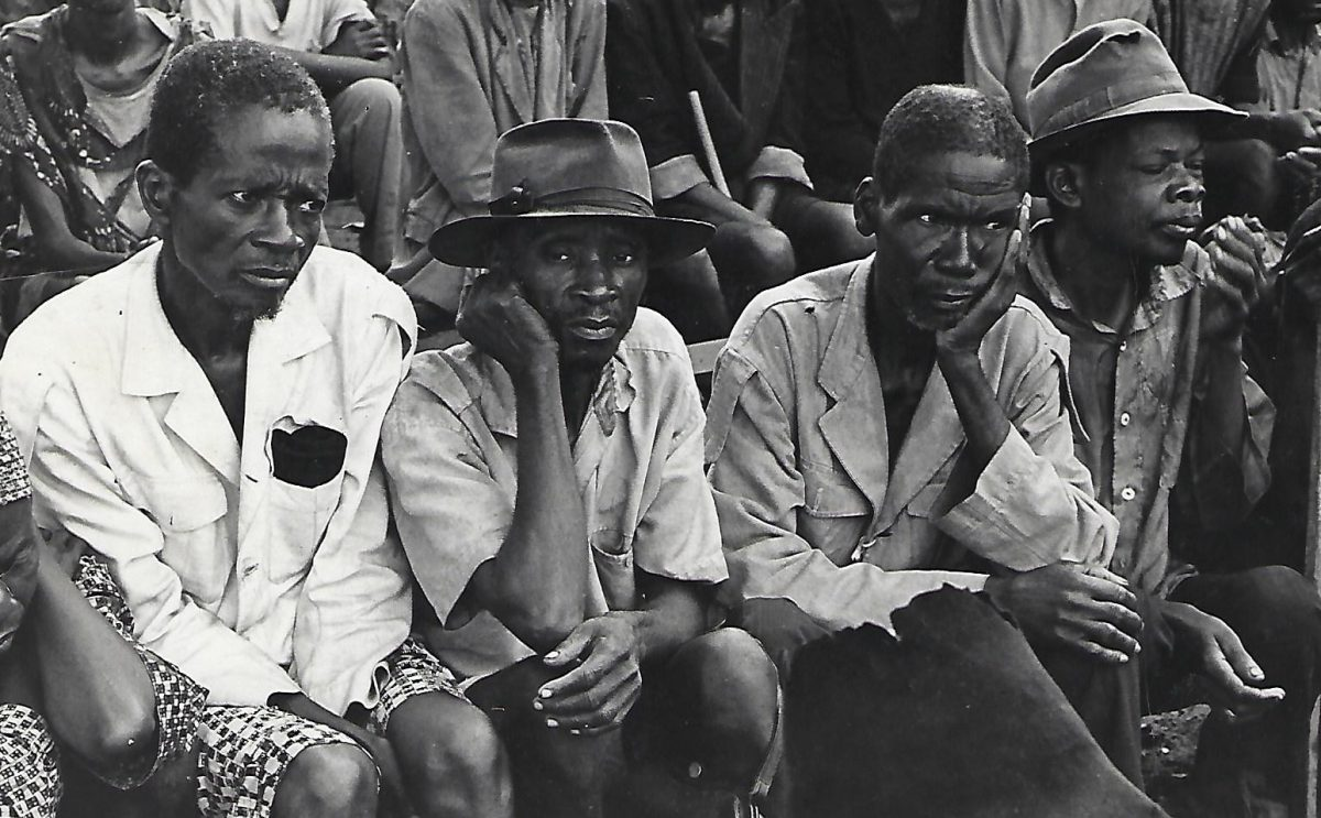 Biafra, photo by Daniel Grotta